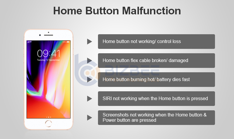 newest d0131 564b9 How to Fix Home Button Not Working For iPhone 7/ 7P/ 8/ 8P - BizBee