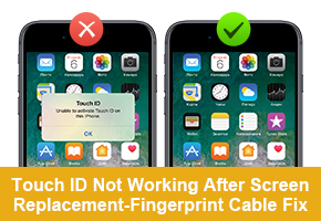 Touch ID Not Working After Screen Replacement-Fingerprint Cable Fix This cable is suitable for iPhone 7G - iPhone 8 Plus screens